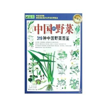 中药植物手绘图
